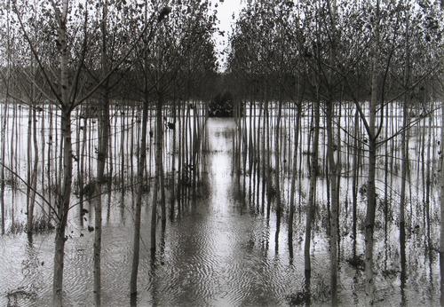 """GEORGE TATDGE  """"The Po River"""", 2001, courtesy dell'artista"""